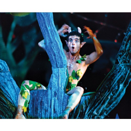 a midsummer nights dream 5 essay Your students have just finished reading a midsummer night's dream this essay assignment gives a midsummer night's dream: character analysis, five-paragraph.