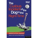 The Curious Incident of the Dog in the Night-Time by Mark Haddon (play adapted by Simon Stephens)