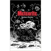 Meteorite by Barbara Norden (Brand new, unused copy)